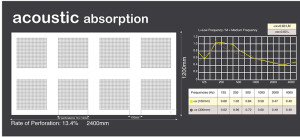 Acoustic Absorption